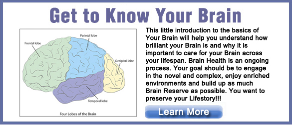 Get to Know Your Brain